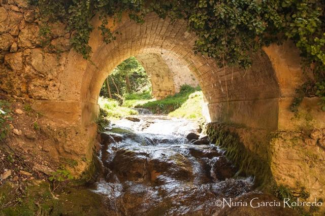 Puente con cascada