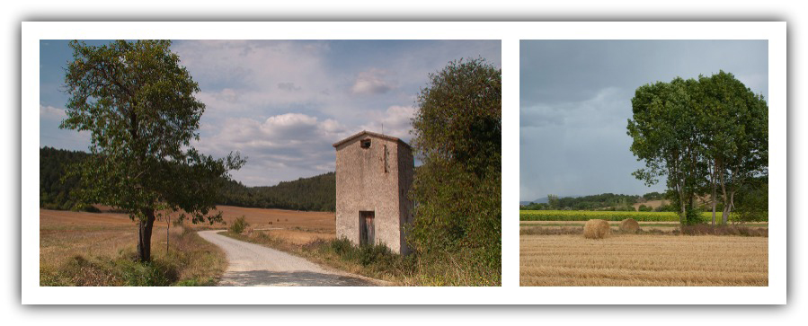 Antiguo palomar y camino hacia Villaluenga de Losa