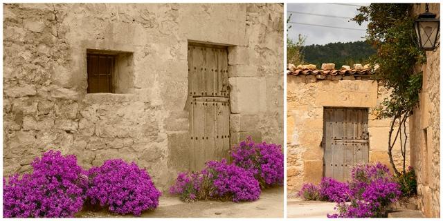 Casa medio derruída con flores en primavera
