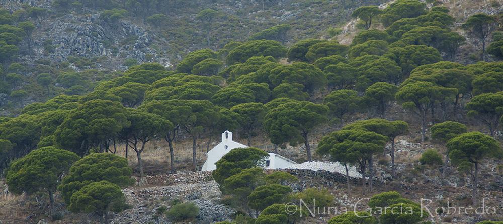 Ermita en la montaña, entre árboles