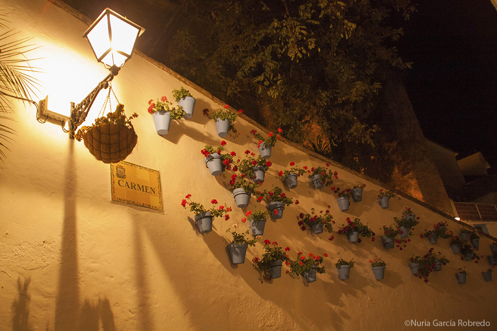 Fachada con macetas en Marbella