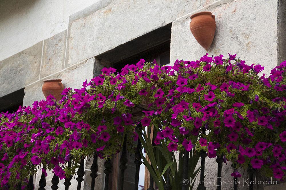 Balcón floreado