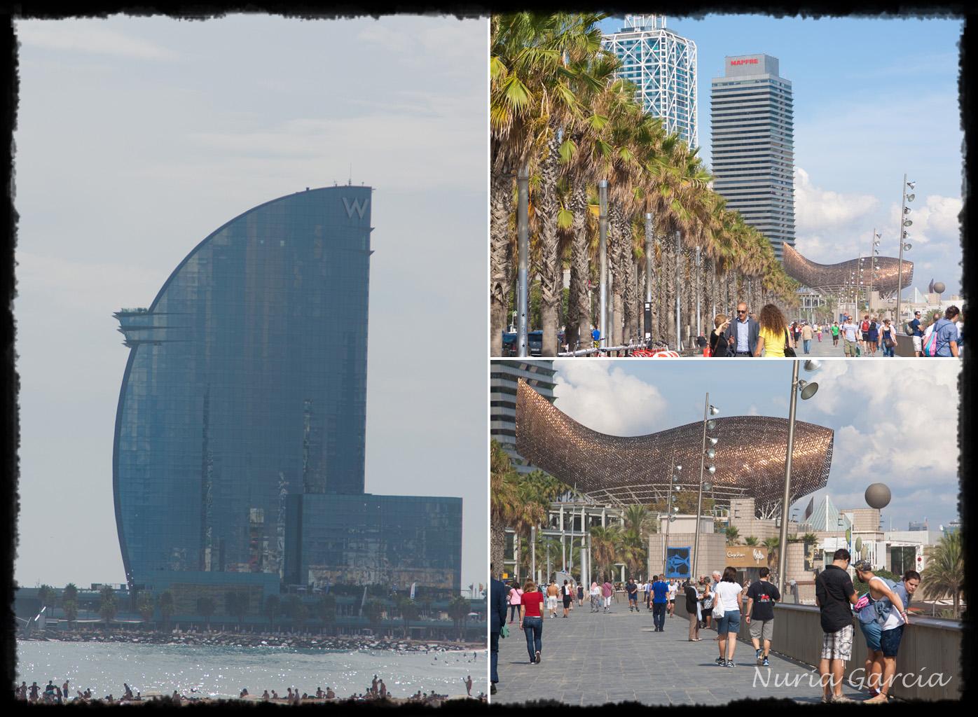 Diferentes vistas por el Paseo Marítimo