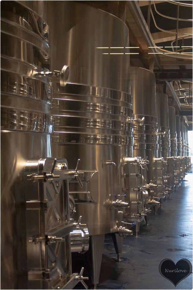 Piletas de fermentación